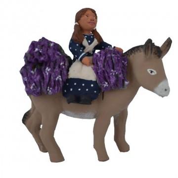 Ramasseuse de lavande sur dos d'âne