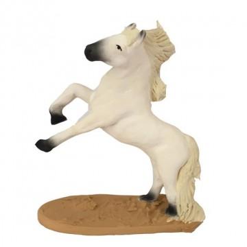 cheval camarguais cabré